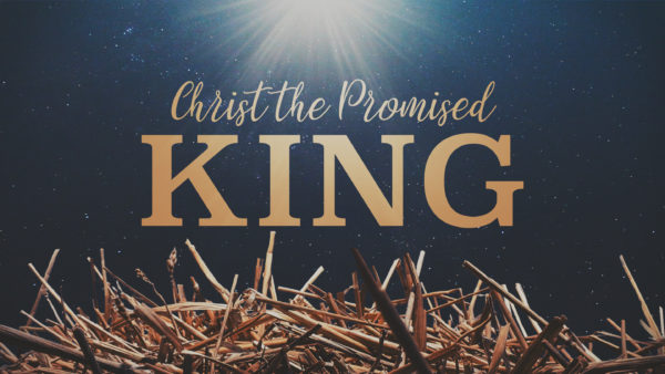 Christ the Promised King