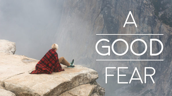 Wisdom Starts with a Good Fear Image