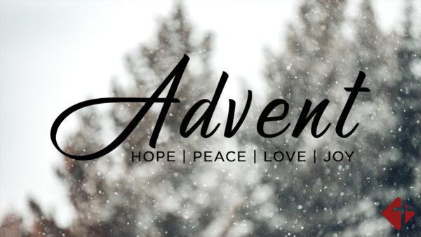 The Hope Jesus Brings Image