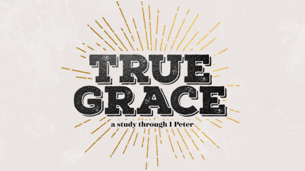True Grace #6 - Committed to Holiness Image